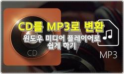 CD MP3 변환, 윈도우 미디어 플레이어에서 쉽게 리핑하기