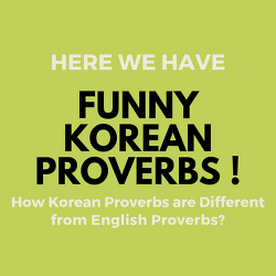 Learn Korean with Funny Korean Proverbs!