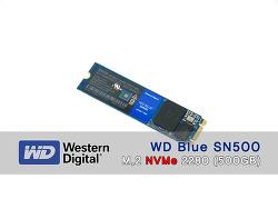 블루의 진화! WD Blue SN500 M.2 2280 SSD 사용기