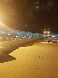 KE026 SFO-ICN 샌프란시스코-인천 대한항공 이코노미 탑승기(김해 내항기 환승 포함)