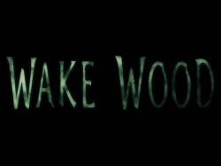 [ Wake Wood (2010) ]