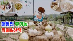 🇹🇭매홍손 먹방 | 🥬🥒🍅유기농 샐러드뷔페 (꿍쿤룽) Mae Hong Son Organic Buffet