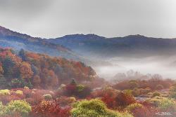 가을의 정원