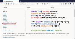 [JAVA] Windows 10 컴퓨터, JAVA 8 버전 설치하기