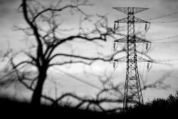 765는 핵발전소의 자식