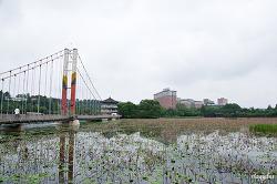 [전주] 덕진공원