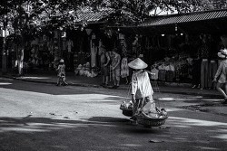베트남 과일 파는 노인