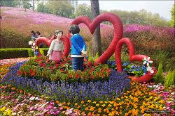 <군포><봄꽃여행>군포철쭉축제 다녀왔어요