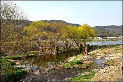 금호강변,검단동 둑길 걷기 ( 산격대교-공항교)