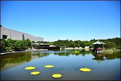 한국의 박물관,미술관 현황
