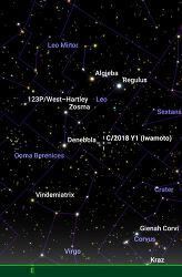 2019년 2월 9일 23시, 이와모토 혜성 (Comet Iwamoto, C/2018 Y1)의 예상 위치