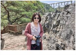 [영월여행] 청룡포 탐방코스 노산대와 금표비 둘러보고 마무리..#4