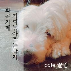 카페REVIEW : 커피볶아주는남자 카페끌림 :: 화곡역 조용한 카페, 화곡동 카페 추천