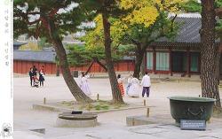 가을 고궁 - 창경궁에서 #4