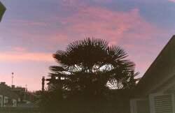 하늘색과 분홍색이 섞인 알 수 없는 노을의 흔적처럼.