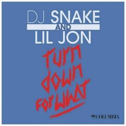 Turn Down For What? - DJ Snake & Lil Jon / 2013