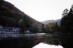 유후인 긴린코호수 산책 _ 이즈미소바 맛집추천_ 금상 고로케 먹기