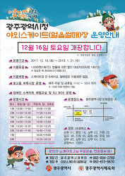 2017 광주시청 야외스케이트장 개장