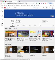 유튜브 채널 운영
