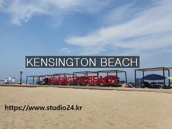 8월 첫 주에 다녀온 강원도 캔싱턴해변, KENSINGTON BEACH
