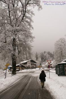 2011 사진공모전 겨울