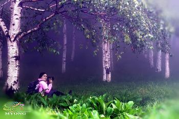 숲속의미녀