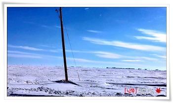 캐나다의 겨울, 끝없는 설원.... 이젠 지겹다. ㅡ.ㅜ