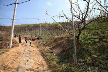 [파주 나들이] 파주 심학산 둘레길 - 서울 근교 나들이 하기 좋은 곳