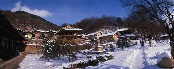 부석사(winter)