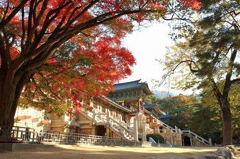 가을로...