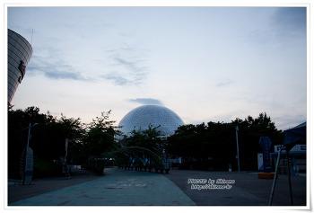 대전엑스포 과학공원 2010 루미나리에 & 세계 맥주 페스티벌 및 음악분수 ^^