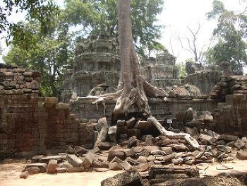 베트남 캄보디아 라오스 및 인도차이나 여행후기 모음