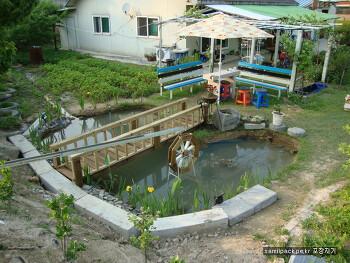 작은 정원에 작은 연못만들기 도전.....