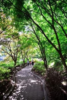 산책하기 좋은 전북 순창 강천산