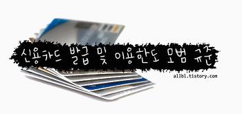 [국내 이슈] 더욱 강화된 신용카드 발급기준