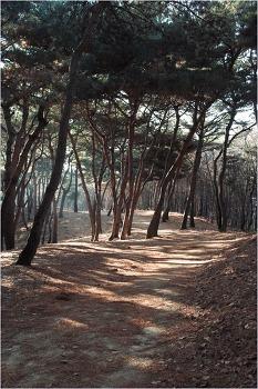 융건릉 산책길