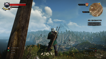 Witcher 3 : Wild Hunt 한달째.