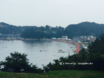 강원 삼척 가볼만한곳 - 용화 해수욕장에서 투명카누 타기 + 길남항 추가