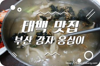 태백 맛집 추천 부산감자 옹심이 내일로 맛집