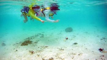괌 여행후기 #5( 렌트 그리고 스노쿨링 )