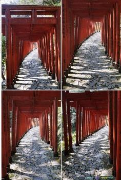 일본 사가현여행 #25 -유토구이나리신사에서 ②