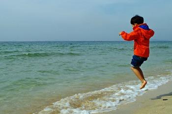 바다 위를 날다.