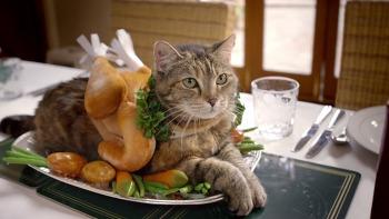 """고양이에게 이상한 코스튬을 입히는 애묘인/집사들에게 전하는 메시지 - 고양이 사료 템테이션스(Temtations)의 TV광고 """"크리스마스라서 미안하다고 말하세요(Say Sorry for the Holidays)""""편 [한글자막]"""
