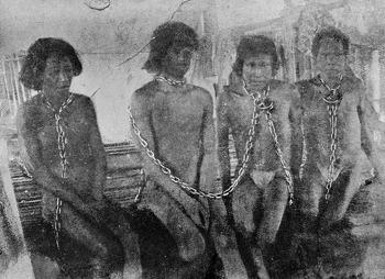 [아마존] 20세기 초 아마존의 푸투마요, 열대우림의 '살인의 추억'