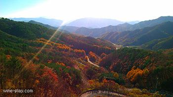 대전 와인&커피 감성여행 3탄 @ 도마령, 강선대