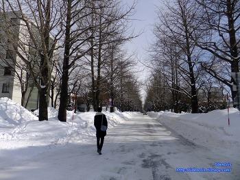 [2012 홋카이도여행][09]삿포로, 눈축제는 다음 기회에..