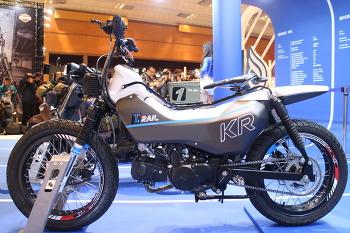 kR모터스 T-RAIL 110