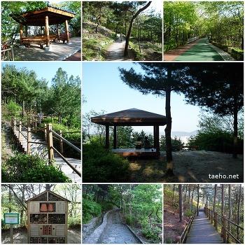 걷기좋은 서울길 - 개운산 둘레길