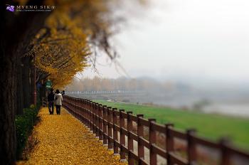 가을속으로