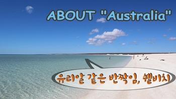 이 곳은 지상 낙원인가, 쉘비치 - 호주 서북부 캠핑카 여행기
